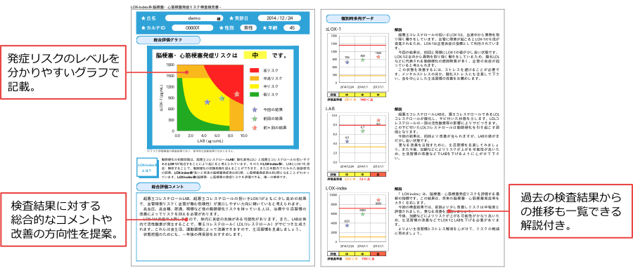 LOX-index® 検査結果説明レポート