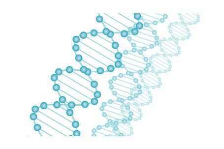 消化器がんの遺伝子検査「マイクロアレイ血液検査」
